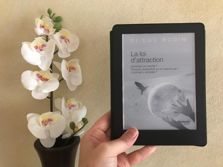 La-loi-d'attraction-Luc-Bodin