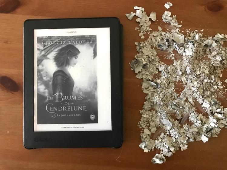 Les-Brumes-de-Cendrelune-1